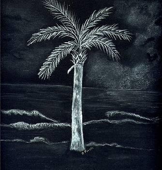 Carolina Night by Diane Frick