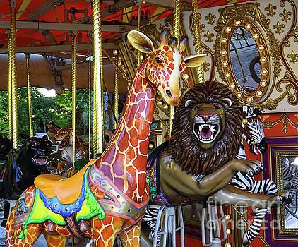 Carousel Fun by Deniece Platt