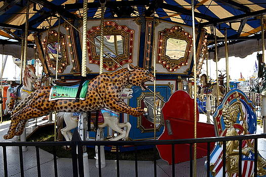 Carrousel 138 by Joyce StJames