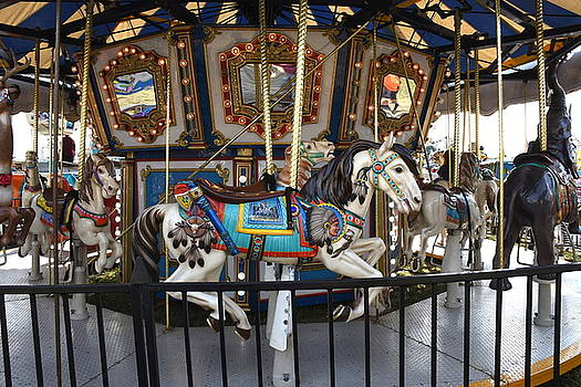 Carrousel 139 by Joyce StJames