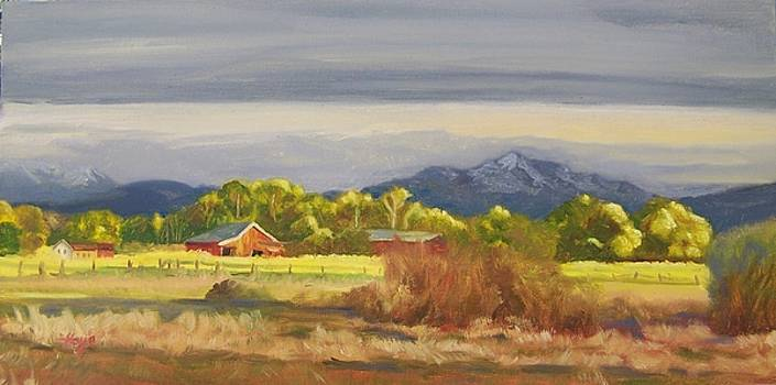 Carson Valley by Donna Hays