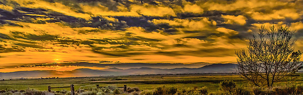 Carson Valley Sunrise by Nancy Marie Ricketts