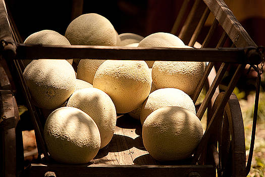 Cart of Melons by Walt Stoneburner