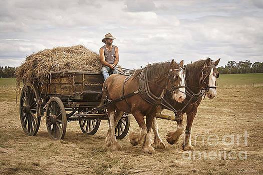 Carting Hay by Linda Lees