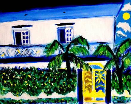Casa Laguna by Ted Hebbler