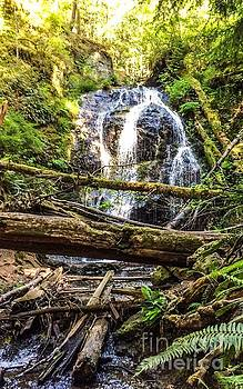 Cascade Falls by William Wyckoff
