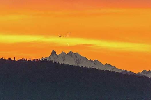 Cascade mountain in Dawn color  by Hisao Mogi