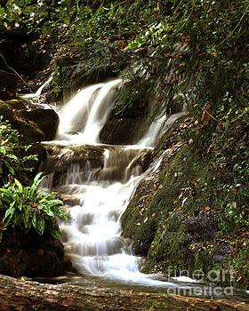 Cascading Falls by Baggieoldboy