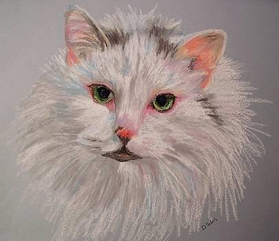 Casper by Donna Teleis