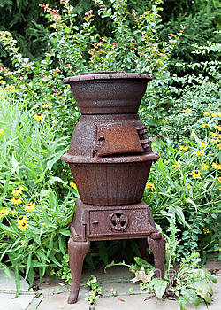 Cast Iron and Wildflowers by Sherry Hallemeier