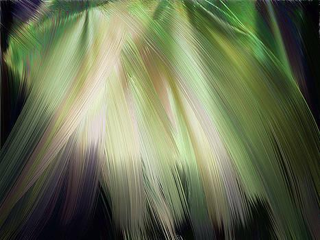 Casting Light by Karen Nicholson