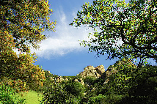Castle Rock by Donna Blackhall