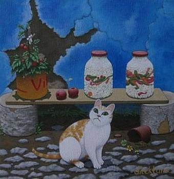 Cat by Dilek Tura