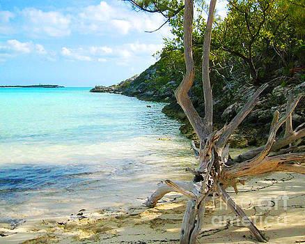 Cat Island Cove by Joseph Re