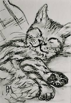 Cat Nap II by Pete Maier