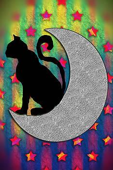 Cat on a Moon by Cindy Boyd