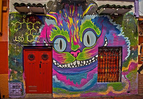 Cat on Wall Graffiti by Nichon Thorstrom
