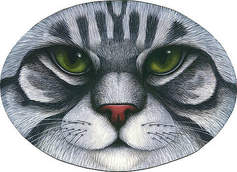 Cat Oval Face by Carol Wilson