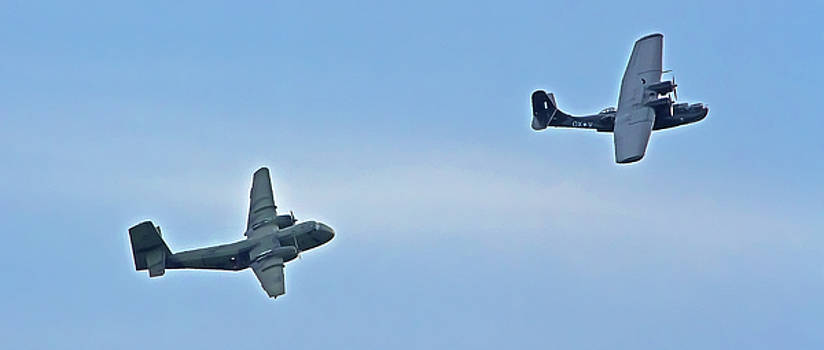 Catalina And Caribou Flying Over Sydney by Miroslava Jurcik