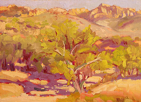 Catalina Trail by Mary McInnis