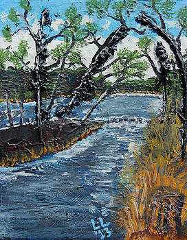 Catawba River Spring by Laura Lawless