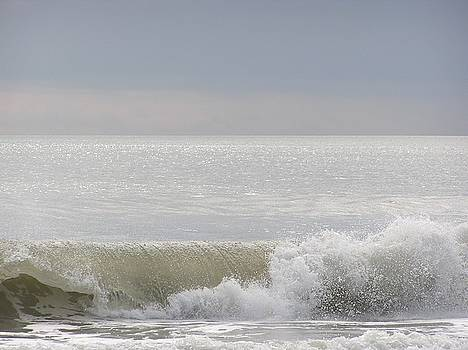 Catching A Wave by Diane Frick