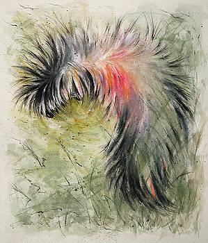 Caterpillar by Rachel Christine Nowicki