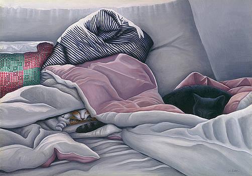 Cats Hide In Blankets by Carol Wilson