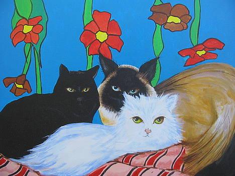 Cats by Jorge Parellada