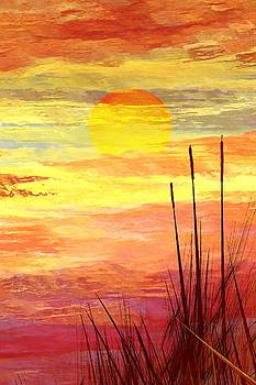 Cattails by Wally Boggus