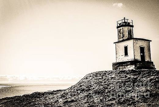 Cattle Point Lighthouse by William Wyckoff