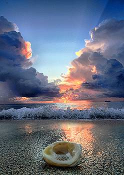 Caught Between Storms by Andrew Royston