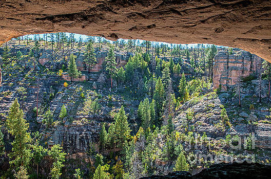 Cave with a View by Steve Whalen
