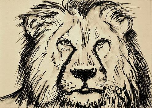 Cecil by Pete Maier