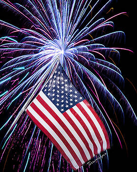 Celebration of Freedom by Terri Harper