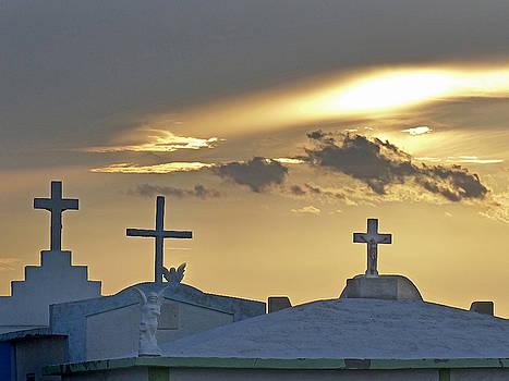 Jeff Brunton - Cementerio Baja Sur 5
