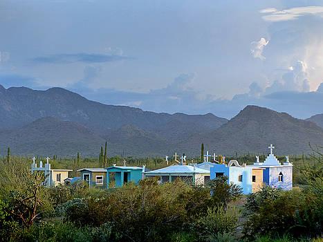 Jeff Brunton - Cementerio Baja Sur 7