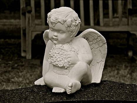 Cemetery Angel by E Robert Dee