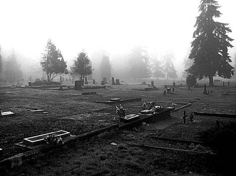 Cemetery At Oakville by Mark James Perry