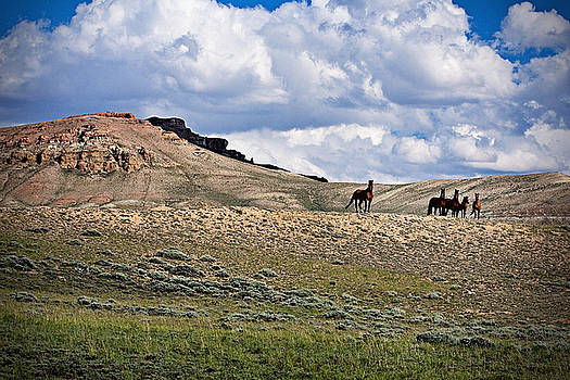 Centenial Peak by Michelle Motherway