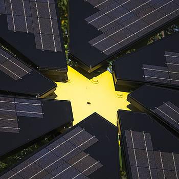 Steven Ralser - Center of Solar Panel Array