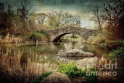 Central Park Gapstow Bridge by Joan McCool