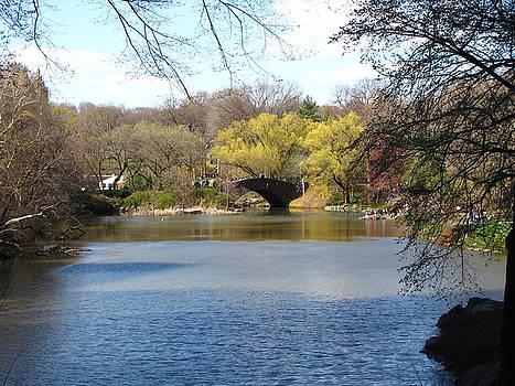 Central Park Lake by Peter Aiello