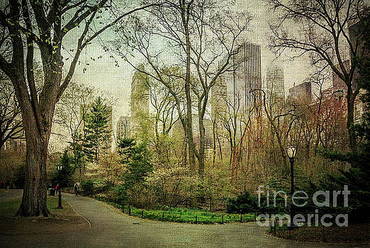 Central Park, New York City by Joan McCool