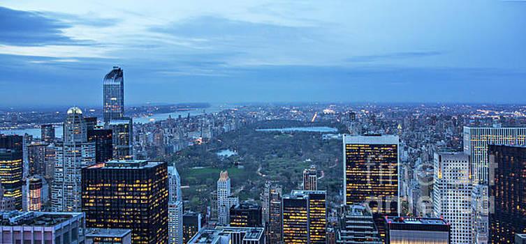 Central Park Skyline by Joan McCool