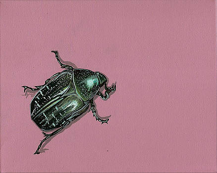 Chaf Beetle by Jude Labuszewski