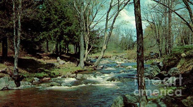 Chagrin Falls  by Ruth Housley