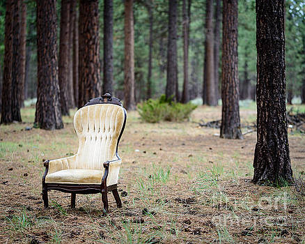 Chair in the Forest by Terry Garvin