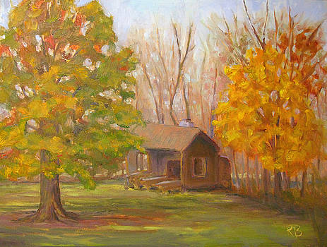 Changing Season by Robie Benve