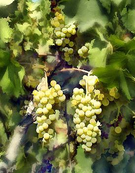 Kurt Van Wagner - Chardonnay
